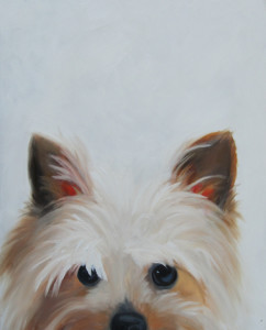 New Yorkie Oil Painting by Austin Artist Amy Hillenbrand
