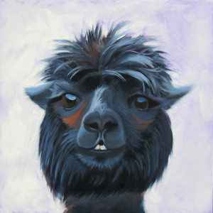 Rebecca the Alpaca Oil Painting by Amy Hillenbrand