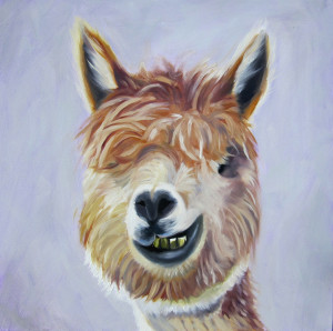 I'm No Llama Oil Painting by Amy Hillenbrand
