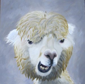 Whatcha Lookin' At Oil Painting by Amy Hillenbrand_edited-1