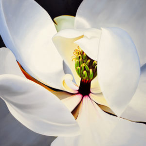 Large artwork for sale, white magnolia with red and green
